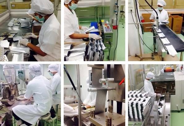 Produksi Gluta Pancea